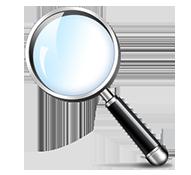 search-audit